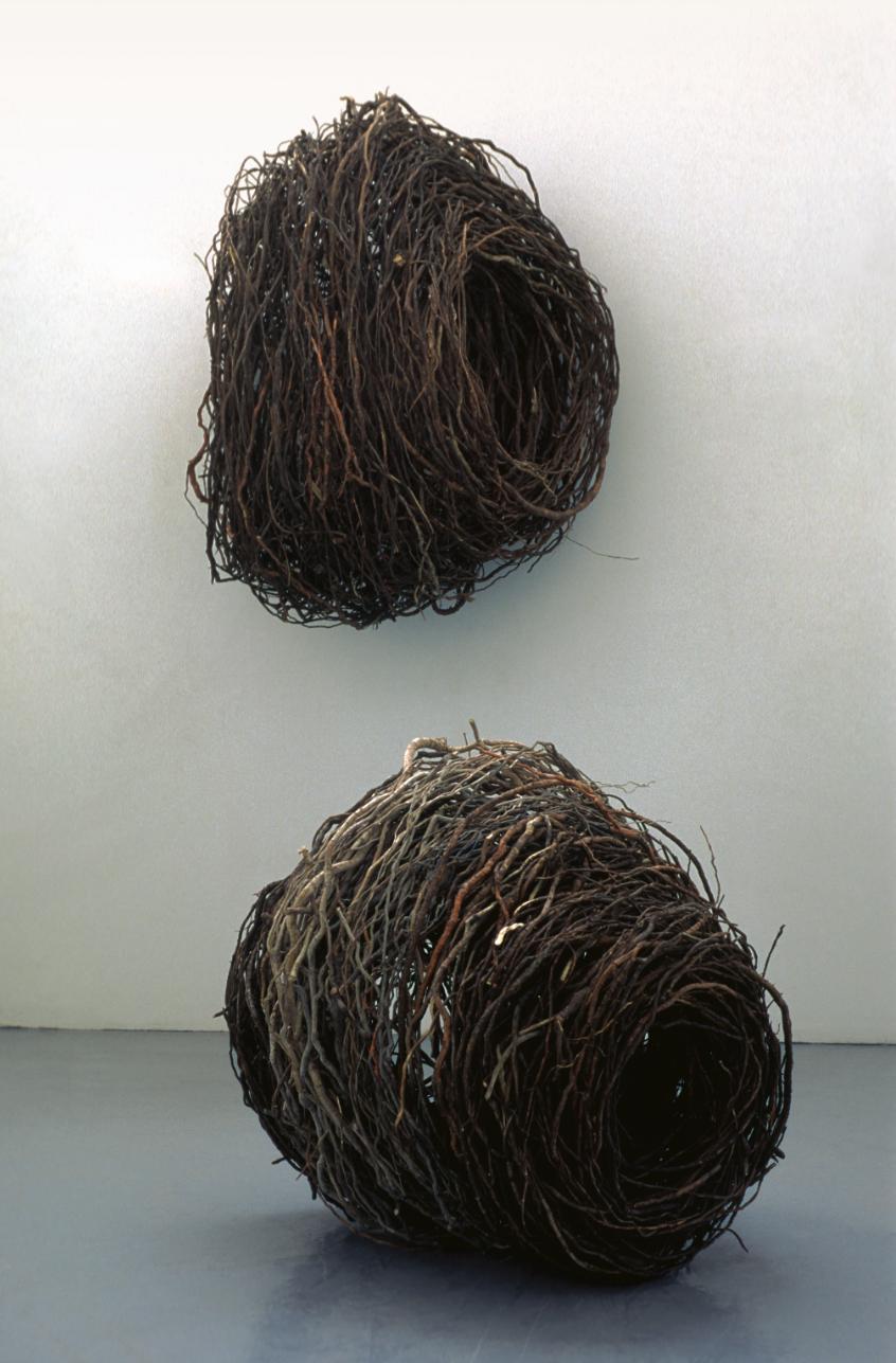 formes racines
