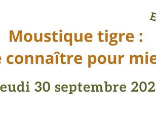 Moustique tigre : visioconférence tout public