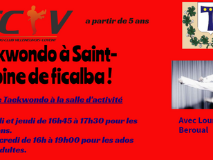 Taekwondo cours à St Antoine cette année