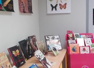 Bibliothèque, une exposition sur les insectes
