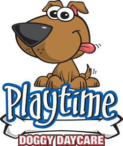 Playtime Doggy Day Care