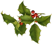 xmas.holly.rotated.png