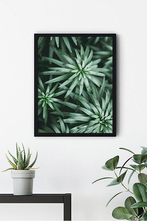Botanik Detay 12 Tablo Poster