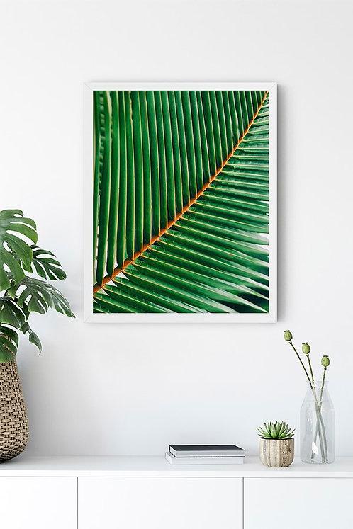 Botanik Detay 5 Tablo Poster