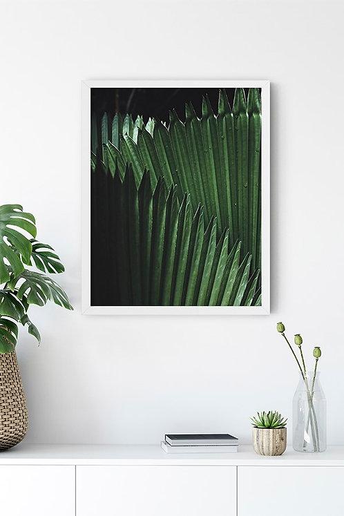 Botanik Detay 15 Tablo Poster