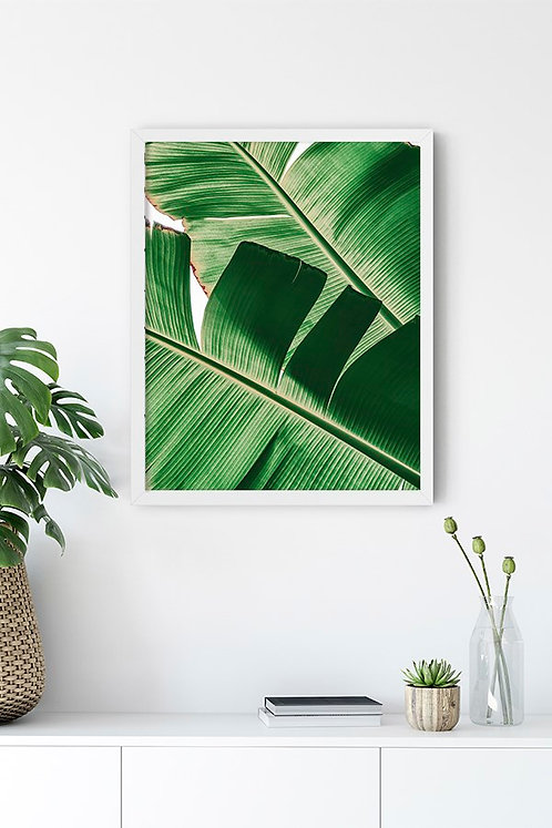 Botanik Detay 3 Tablo Poster