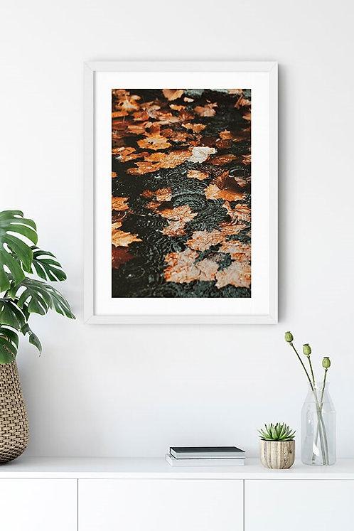 Düşmüş Yapraklar Tablo Poster Kanvas
