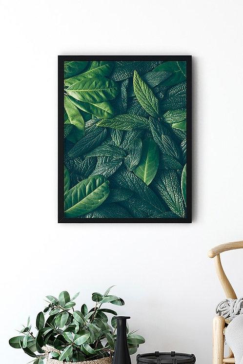 Botanik Detay 7 Tablo Poster