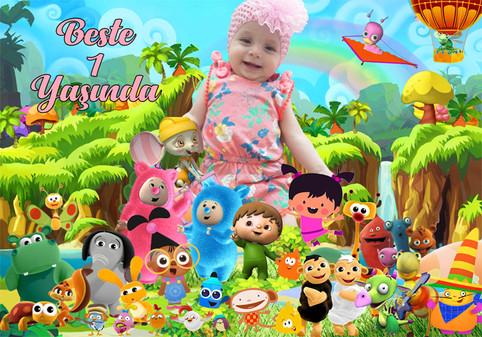 Baby Tv Doğum Günü
