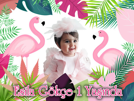 Flamingo Temalı Doğum Günü Fiyatları