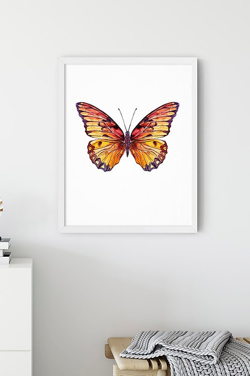 Kahverengi Kelebek Tablo Poster