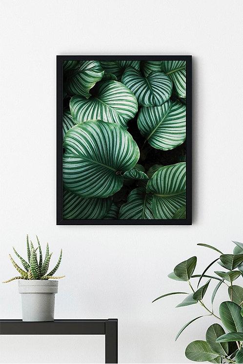 Botanik Detay 9 Tablo Poster