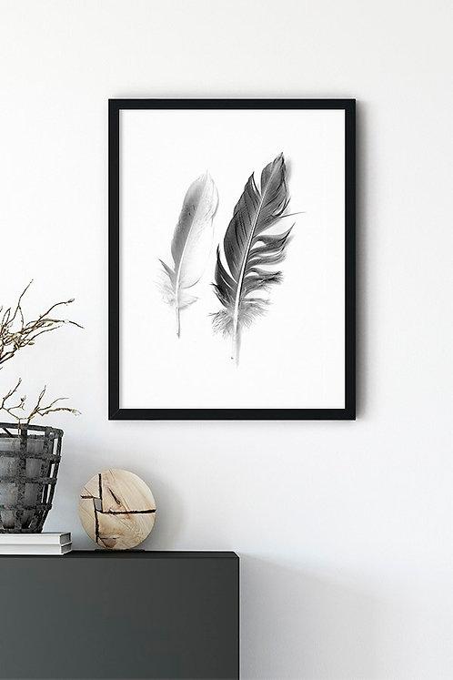 Kuş Tüyü 2 li Tablo Poster