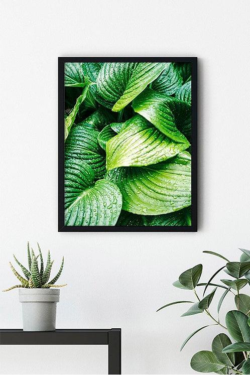 Botanik Detay 2 Tablo Poster