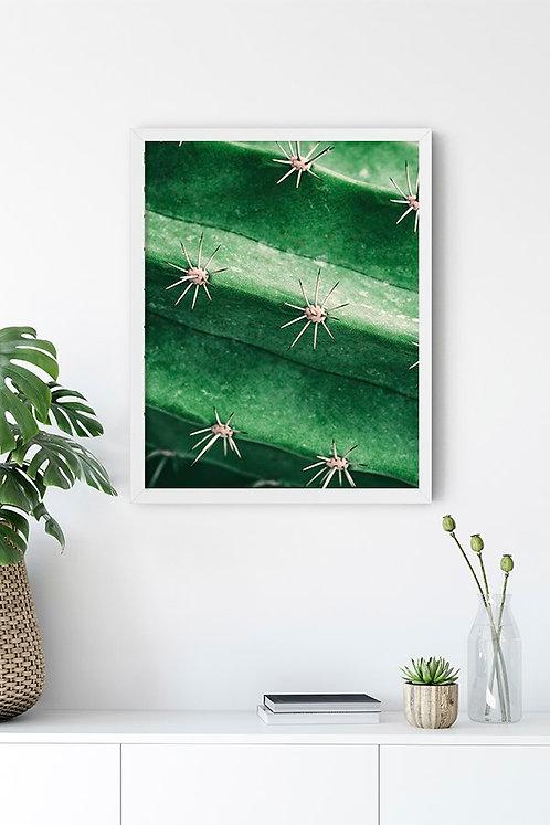 Botanik Detay 4 Tablo Poster