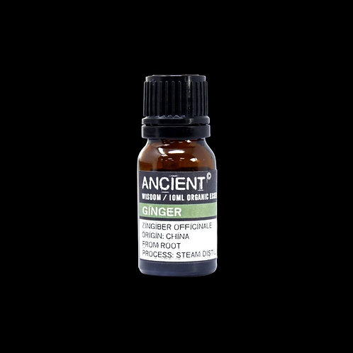 Ginger ORGANIC essential oil - 10ml