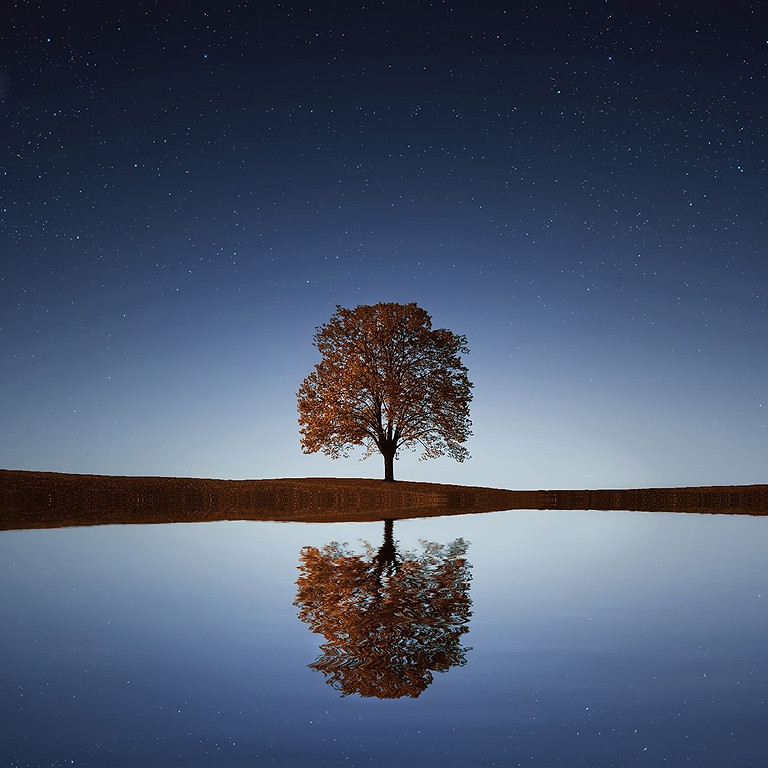 Mindfulness Meditation for the over 55's
