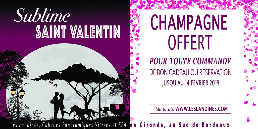 carte Saint valentin petite champagne.jp