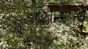 cabanes_dans_les_arbres_gironde les landines