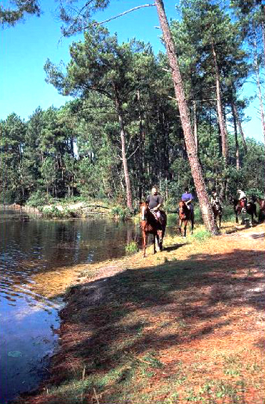equitation, 5 minutes
