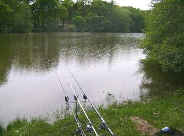 pêche, 5 minutes