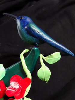 Détail colibri