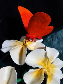 Détail papillon