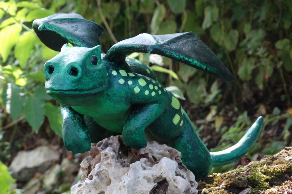 Dragonnet Premier