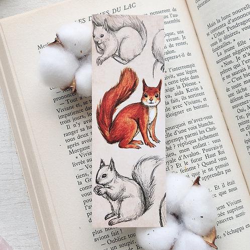Marque-page petit format écureuil