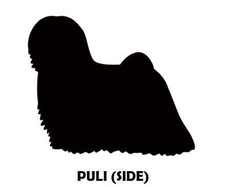 5Silhouette Sample - Hungarian Puli (Sid