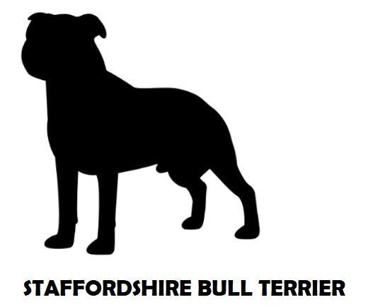 2Silhouette Sample - Staffordshire Bull
