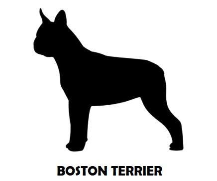7Silhouette Sample - Boston Terrier.JPG