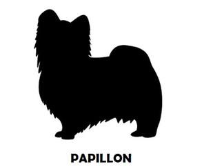 1Silhouette Sample - Papillon.JPG