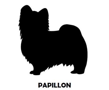 1Silhouette Sample - Papillon.JPG