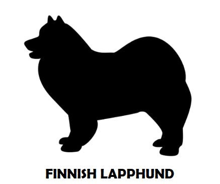 5Silhouette Sample - Finnish Lapphund.JP