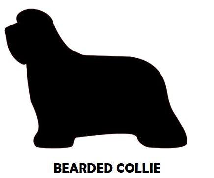 5Silhouette Sample - Bearded Collie.JPG