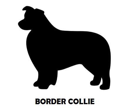 5Silhouette Sample - Border Collie.JPG