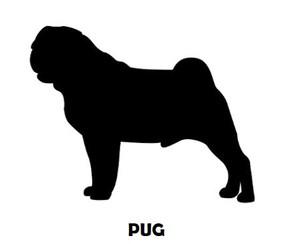 1Silhouette Sample - Pug.JPG