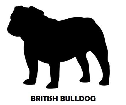 7Silhouette Sample - British Bulldog.JPG