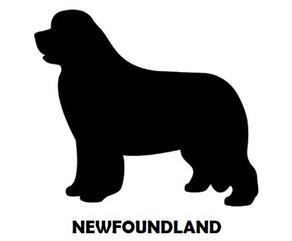 6Silhouette Sample - Newfoundland.JPG