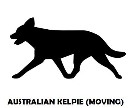 5Silhouette Sample - Australian Kelpie (