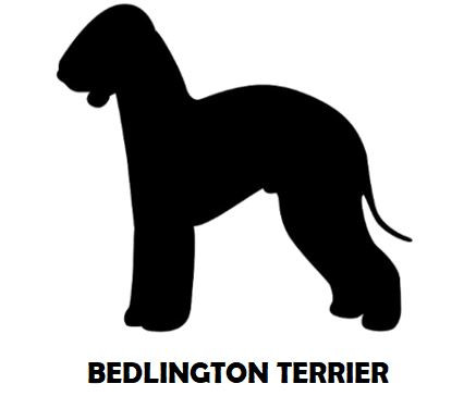 2Silhouette Sample - Bedlington Terrier.