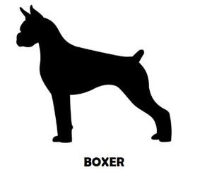 6Silhouette Sample - Boxer.JPG