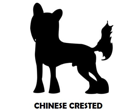 1Silhouette Sample - Chinese Crested.JPG