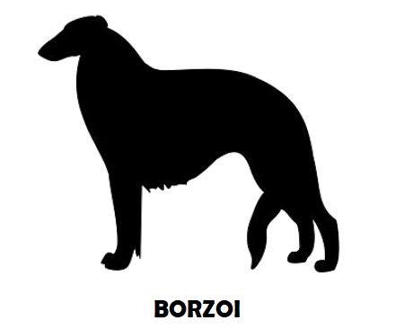 4Silhouette Sample - Borzoi.JPG