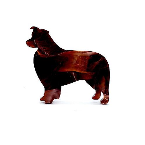 BORDER COLLIE - Phoenix Bronze