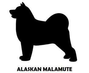 6Silhouette Sample - Alaskan Malamute.JP