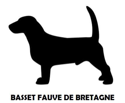 4Silhouette Sample - Basset Fauve De Bre
