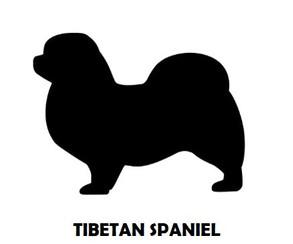 1Silhouette Sample - Tibetan Spaniel.JPG
