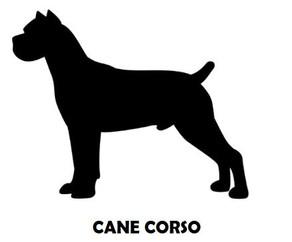 6Silhouette Sample - Cane Corso.JPG